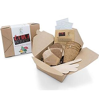 SATTE SAAT Chili Anzucht-Set zur Aufzucht scharfer Chili-Pflanzen mit ökologischen Pflanztöpfen, Anzuchterde, Holz-Sticks, Chili-Samen und Anleitung - Pflanzset Geschenk zu Geburtstag oder Ostern