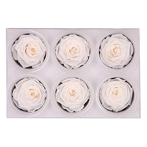 Wovemster handmade eternal 6 rose flower valentines day ornament box il regalo partner ideale per san valentino, anniversario o fidanzamento, bianco