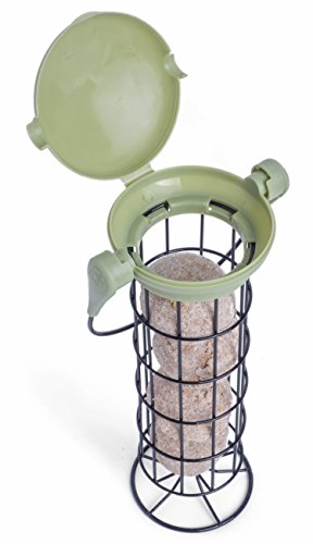 Petface 70040DS1 LokTop Squirrel Proof Fat Ball Feeder, Multi-Colour, 18.5x18.5x29 cm 3