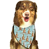 Osmykqe Funny for Kangaroo Zoo Hund Bandana Pet Schal für kleine mittelgroße Hunde Zubehör