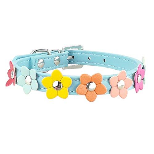 Newtensina Stilvolle Hundehalsband niedlichen Hundehalsband Mädchen Blume Welpen Halsbänder für kleine Hunde mit Blume