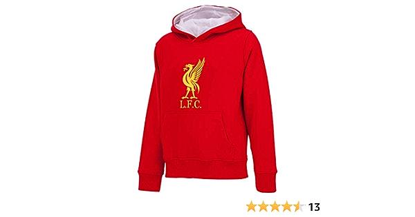 Liverpool Kapuzensweatshirt LFC Herrengr/ö/ße Offizielle Sammlung