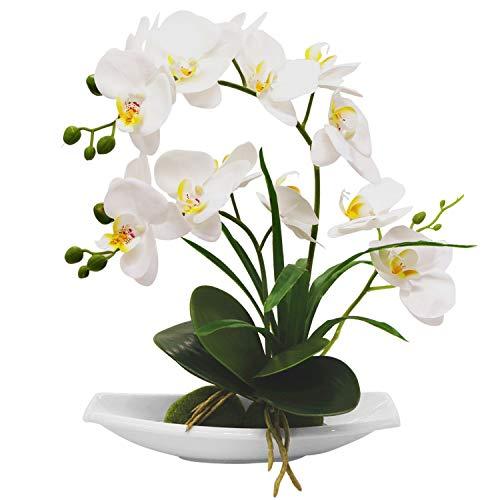 True Holiday Orchidea Artificiale composizioni Floreali con Vaso in Porcellana Bianca, Fiori Artificiali Bonsai Decorazione centrotavola, plastica, Realistico e Realistico White
