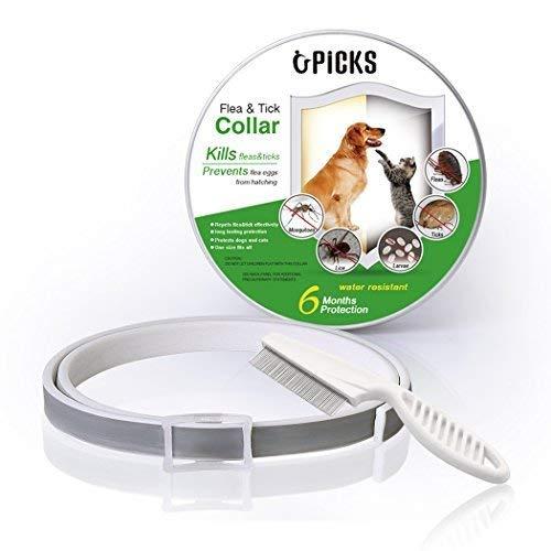 Collier anti-puces pour chien - 6mois de protection...