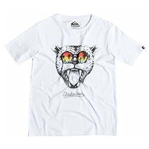 Quiksilver Classtysunsetca T-Shirt Garçon Blanc FR : 8 ans (Taille Fabricant : XS/8)