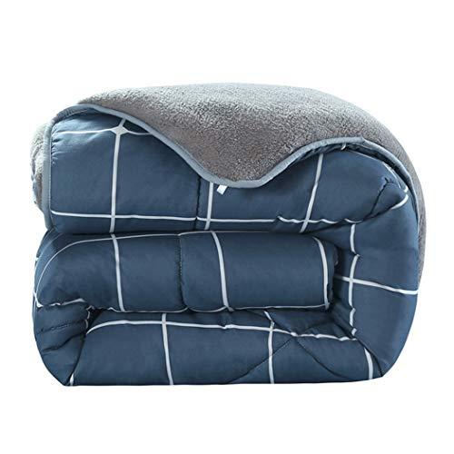 GJFeng Quilt Plus Velvet Cachemire Épais Automne Et Hiver Quilt Super Soft Quilt Cachemire Family Student Quilt (Size : 180cm*220cm)