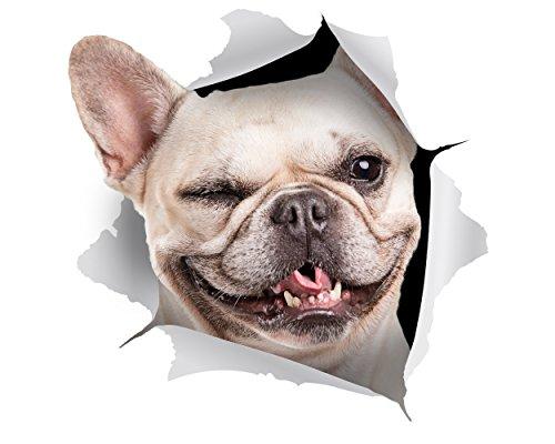 Winston & Bear 2 pack - adhesivos 3D perro - guiño francés Bulldog Sticker para la pared, nevera
