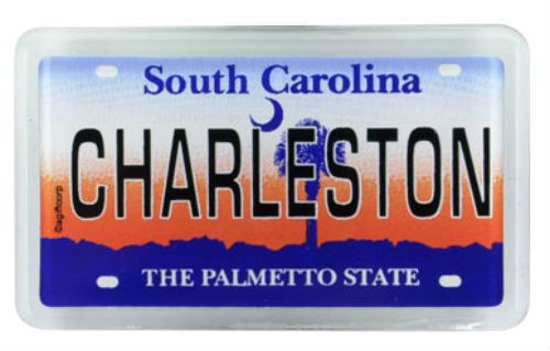 CharlestonCity in South Carolina License Plate Kleiner Kühlschrank Acryl Collector's Souv...