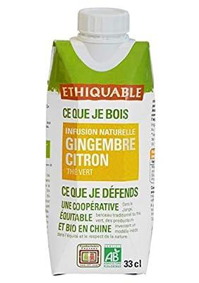 Ethiquable Thé Glacé Thé Vert Gingembre Citron Vert Sri Lanka Bio 33 cl - Lot de 2
