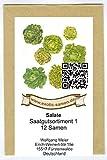 Samen - Saatgutsortiment - Set - Mischung - Mix - Salatbeet 1-12 Sorten - ca. 2.900 Samen