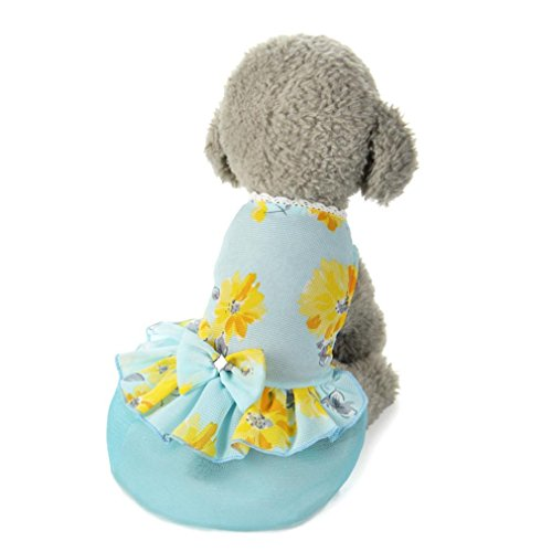 LHWY Dog Bow Tutu Kleid Spitze Rock Haustier Welpen Hund Prinzessin Kostüm Kleidung Chiffon Blau (XS, Blau)