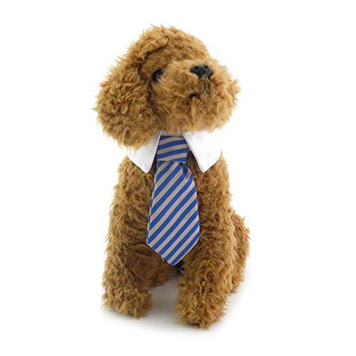 Katze Twill Baumwolle Krawatte Kleine Hunde Katzen Welpen Krawatte Gentleman Krawatte für weibliche Stecker gestreift Krawatte Halsband (Coole Paare Halloween-kostüm Ideen)
