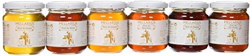 Miel Mellarius packaging 6 variedades 250g -Total 1500 g