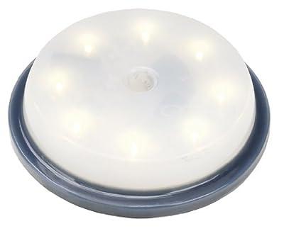SLV LED Einsatz für Glas Plot Rund, 2,6 W, warmweiß, IP67 550212 von SLV - Lampenhans.de