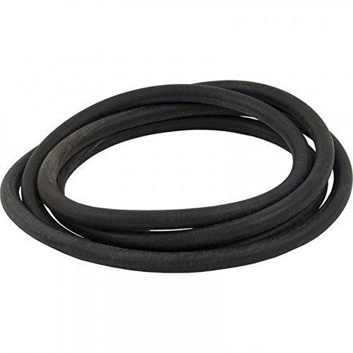 Pentair O-498 O-Ring pour Titan CM - Quantum CM Réservoir Corps de filtre