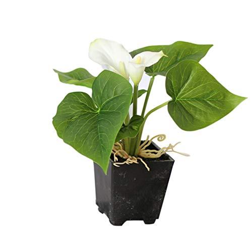 Homeofying 1 Stück Künstliche Blume Calla Lilie Topf Bonsai Bürogarten Desktop Party Decor Für Wohnzimmer Weiß