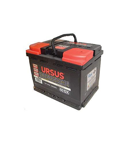 Batteria Auto Ursus 60 Ah Dx