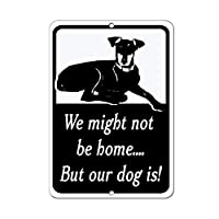 """WENNUNA We Might Not Be Home&Hellip; But Our Dog Is! Pet Animal 8""""x 12"""" Aluminum Metal Signs"""