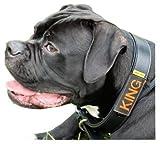 josi.li Halsbandtasche schwarz für Hundemarke
