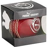 Puma Karbon pelota de Cricket de cuero rojo (IN91822201)