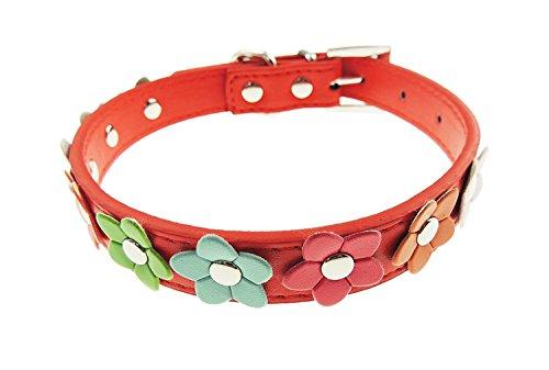 Leder Look Bunte Daisy Flower Cat Hundehalsband (Daisy Strümpfe)