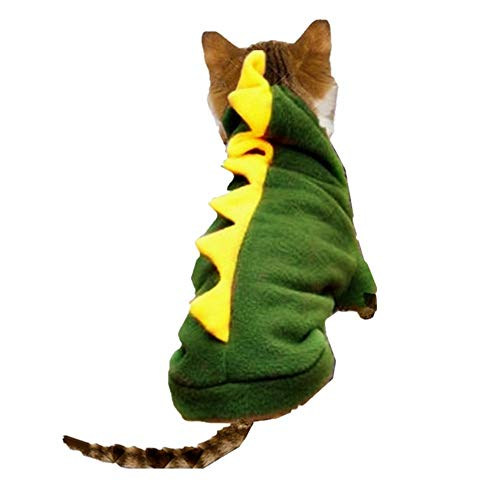 Katze, Drache Kostüm bei Kostumeh.de