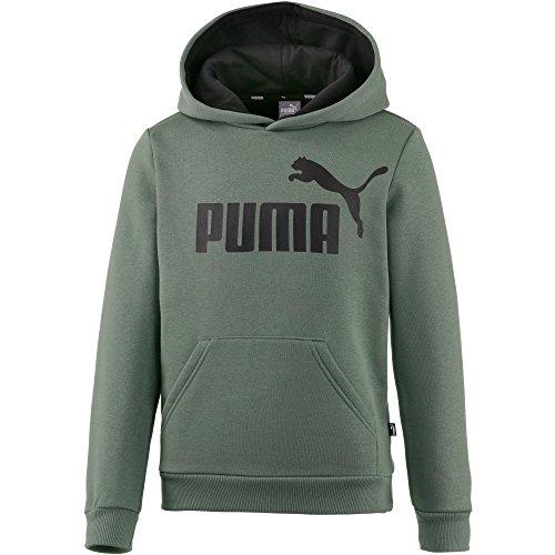 Puma Jungen ESS Logo Hoody FL B Sweatshirt, Laurel Wreath, 164