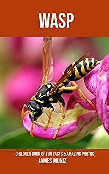 Ebooks Wasp: Children Book of Fun Facts & Amazing Photos Descargar PDF