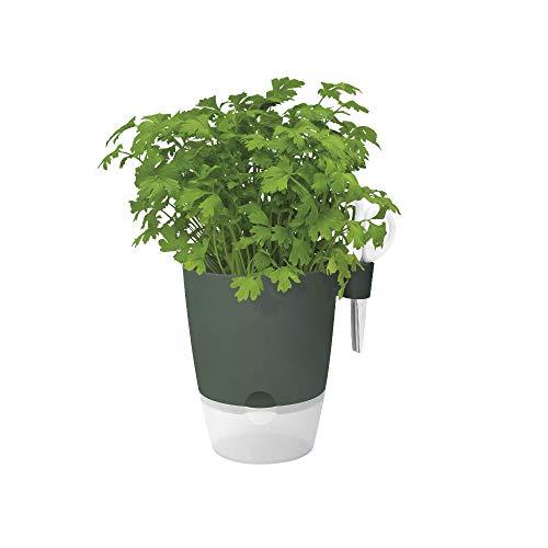 Elho Brussels Herbes Allin1 13 - Pot De Fleurs - Leaf Green - Intérieur - Ø 15.6 x H 16.1 cm