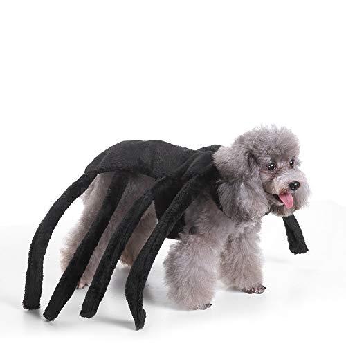 BZAHW Hundekleidung Weihnachten Halloween erschrocken Black Widow Spider Harness Hund Kostüm (Size : L) (Spider Kostüm Für Den Hunde)