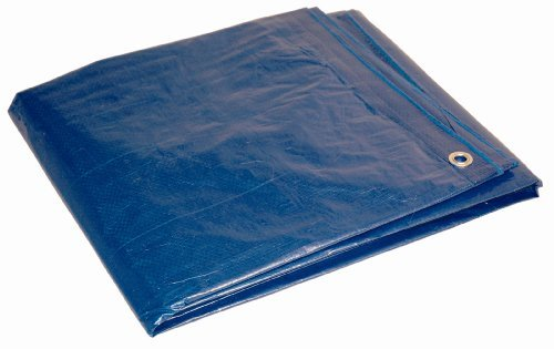 10' x 12' Dry Top Blue Full Size 7-mil Poly Tarp item #010121 by DRY TOP