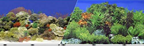 Blue Ribbon Pet Products ABLVSB1519 Aquariumdeko Riffenhintergrund für Aquarien, 48 cm, 15 m (Blue Ribbon Pet Products)
