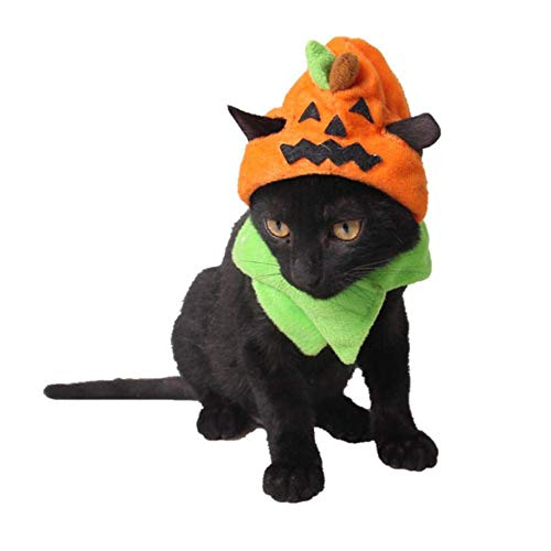 Coppthinktu Hunde-Kürbis-Kostüm, Halloween, Kürbis-Hüte mit Schal für Hunde und Katzen (Katzen Kürbis Halloween-kostüm Für)