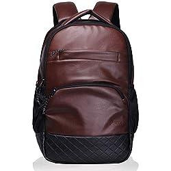 Digital Innovation Luxur Brown 25 Liter Laptop Backpack
