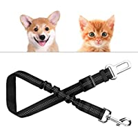 Hunde-Sicherheits-Gurt 2er Set f/ürs Auto Anschnallgurt Hund f/ür eine sichere Autofahrt in verschiedenen Farben von AGIA TEX