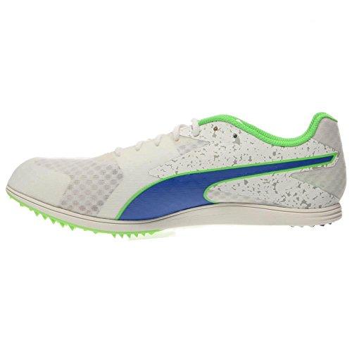 Puma Tfx Distance V5 Piste de Spike Shoe white-strong blue-fluo green