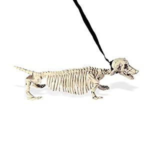 WIDMANN?Perro salchicha Esqueleto con Correa Unisex-Adult, blanco, 55cm, vd-wdm07093