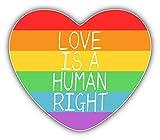 LGBT Rainbow Heart Flag Human Right Auto-Dekor-Vinylaufkleber 12 X 10 cm