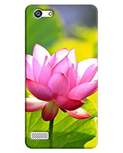 Back Cover for Oppo Neo 7 By FurnishFantasy