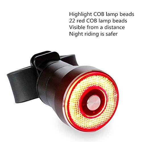 BaoYPP Fahrradbeleuchtung Fahrrad-Smart-Induktions-Bremslicht USB-Ladewasserdichte Nachtreiten Rücklicht Ideal für die Nacht Lesen, Camping, Mountainbiken (Farbe : Photo Colors, Size : 12x8x3.8CM)