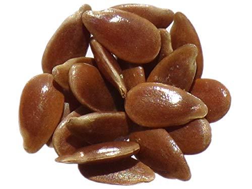 Lin Blanc - 70 graines - Linum Usitatissimum - White Flax - SEM03