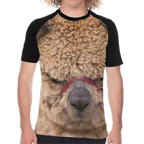 5009649342 Men's T-Shirt Alpaca Llama Pattern Comfortable Crewneck Baseball tee Top