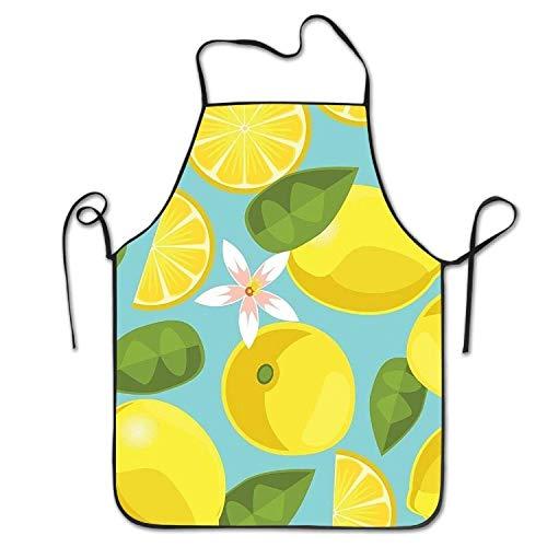 Verkäufer Bier Kostüm - HTETRERW Nice Lemon Pattern Women's Men's Funny Creative Print Cooking Aprons