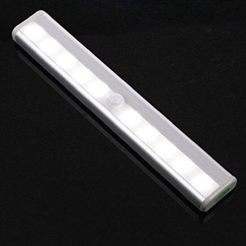 7 Watt-tier-licht (Alcyoneus Nachtlicht mit Bewegungsmelder, Aluminiumlegierung, 10 LEDs, mit Magnetstreifen cool white)