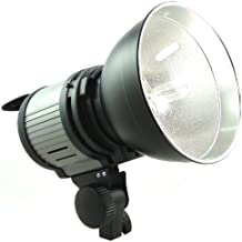 DynaSun QL1000 - Foco de luz continua con bombilla cuarzo para estudio fotográfico