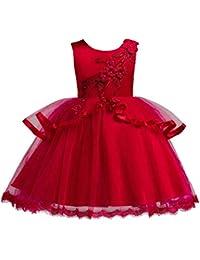 b6cf5c75f43 Sunsoar Elegant Girls Embroidery Flowers Ball Gown Kids Sleeveless Princess  Dress