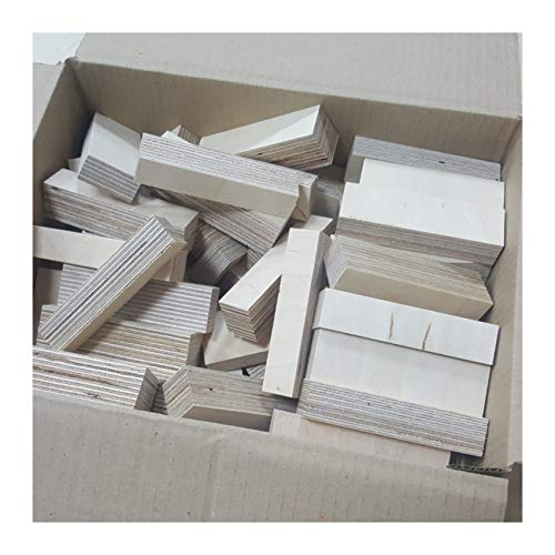 AUPROTEC Natur Holz-Bausteine Birke Länge 100mm Breite 10-30mm Stärken gemischt 18-30mm Multiplex Sperrholz Profiqualität auch als Kreativ Spiel + Bastelhölzer Holz-Bauklötze
