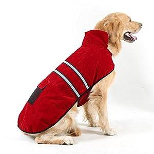 OMGO Manteau d'hiver Automne pour Labrador en Coton Veste pour Chien Chat Vêtement Très Chaud Douillet 3 Tailles