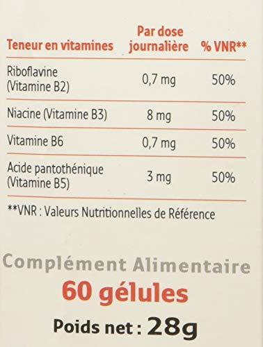 Dieta para adelgazar 900 calorias military