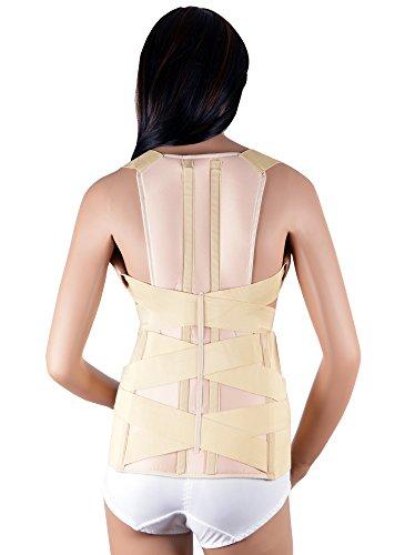 ASSISTICA® Medizinischer Geradehalter Skoliose Korsett Rückenstütze Rückenhalter (Medium)